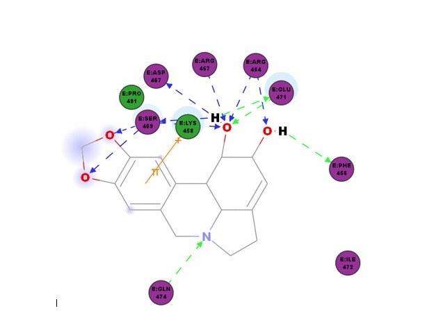 Estudo da UFPB descreve potencial anti-coronavírus de 11 alcaloides
